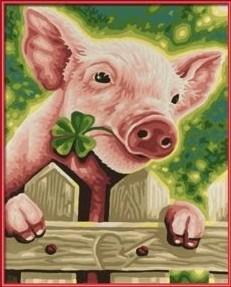 Schipper 609240418 - Glücksschweinchen, MNZ, Malen nach Zahlen