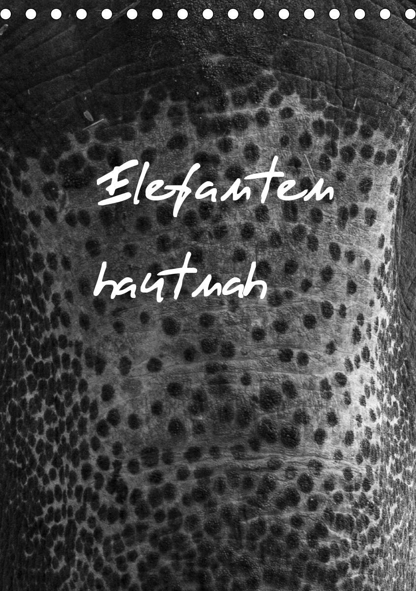 Elefanten hautnah (Tischkalender 2021 DIN A5 hoch)