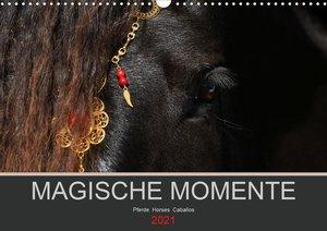 Magische Momente - Pferde Horses Caballos (Wandkalender 2021 DIN