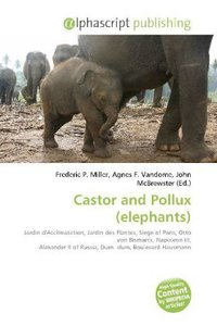 Castor and Pollux (elephants)