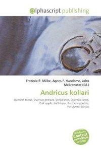 Andricus kollari