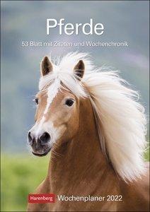 Pferde Kalender 2022