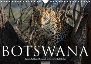 Botswana - Landschaft und Tierwelt (Wandkalender 2021 DIN A4 que