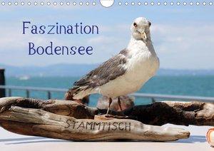 Faszination Bodensee (Wandkalender 2021 DIN A4 quer)