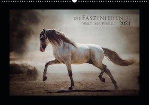 Die Faszinierende Welt der Pferde (Wandkalender 2021 DIN A2 quer