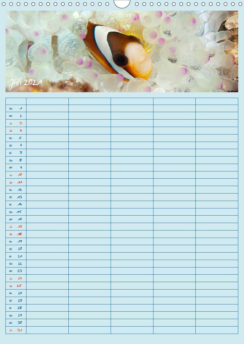 Der Nemo-Kalender (Wandkalender 2021 DIN A3 hoch)