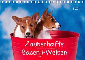 Zauberhafte Basenji-Welpen (Tischkalender 2021 DIN A5 quer)