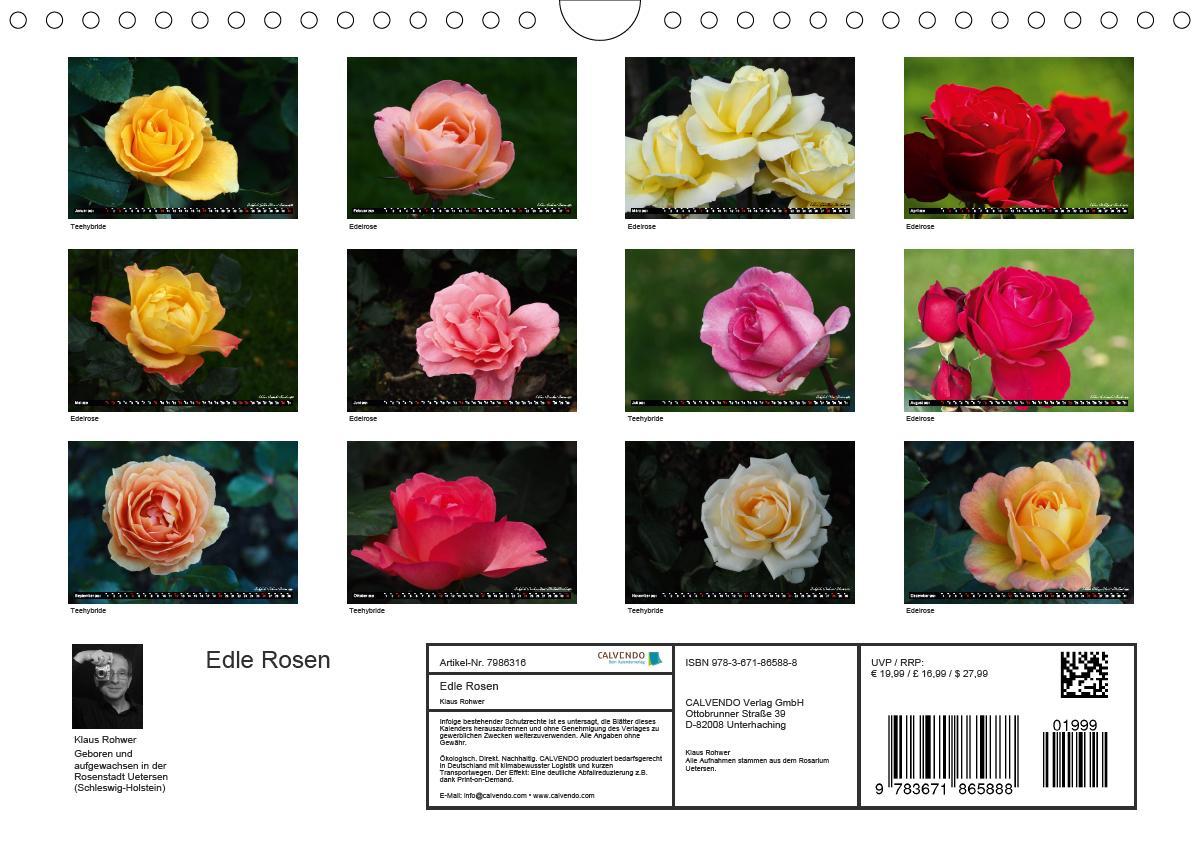 Edle Rosen (Wandkalender 2021 DIN A4 quer)