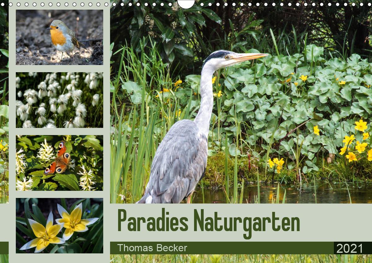 Paradies Naturgarten (Wandkalender 2021 DIN A3 quer)