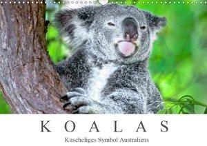 Koalas - Kuscheliges Symbol Australiens (Wandkalender 2021 DIN A