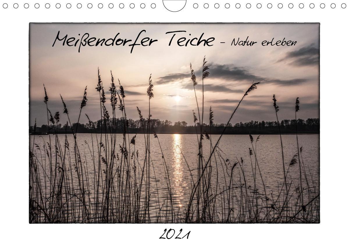 Meißendorfer Teiche - Natur erleben (Wandkalender 2021 DIN A4 qu