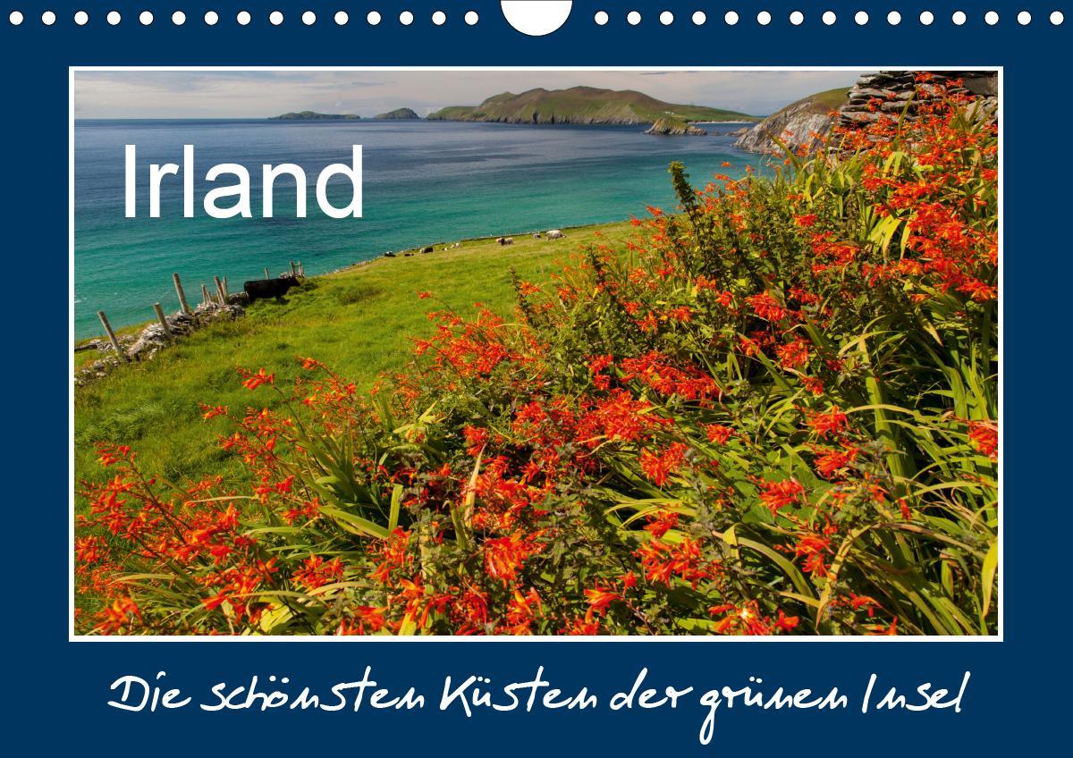 IRLAND - die schönsten Küsten (Wandkalender 2021 DIN A4 quer)