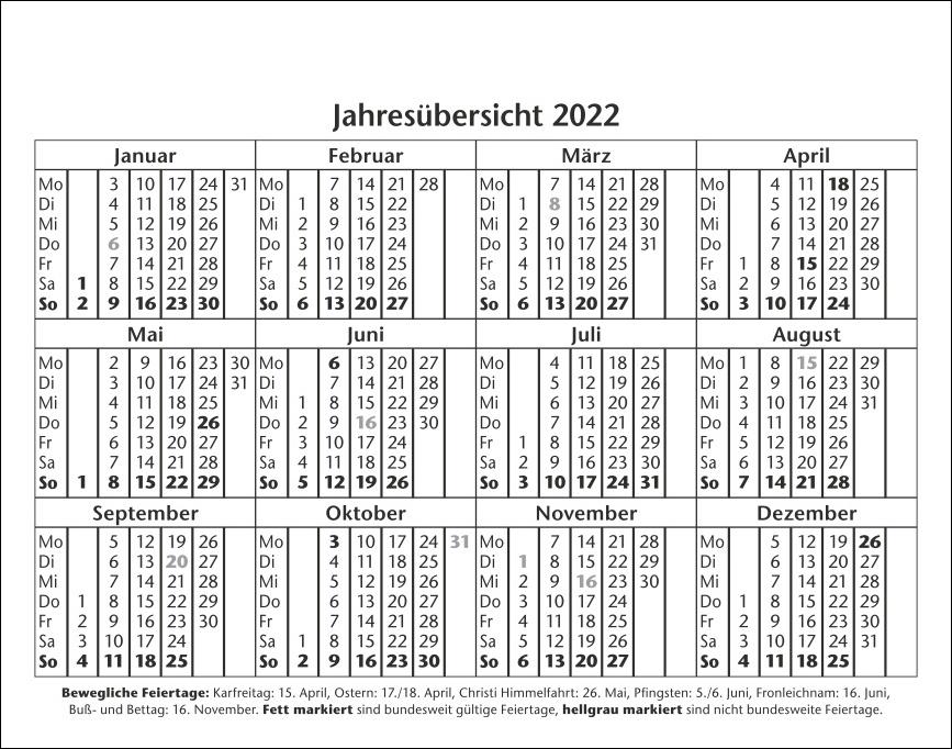 Jeder Spruch ein Treffer Tagesabreißkalender 2022