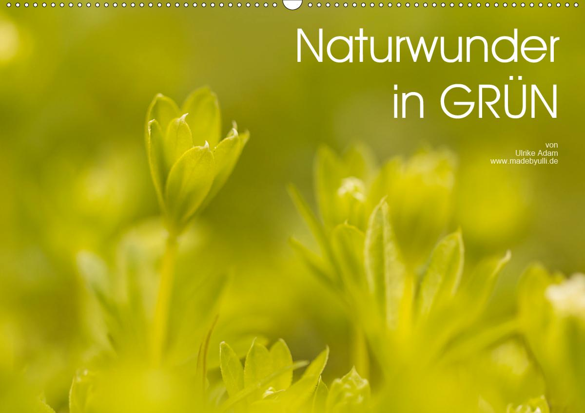 Naturwunder in GRÜN (Wandkalender 2021 DIN A2 quer)