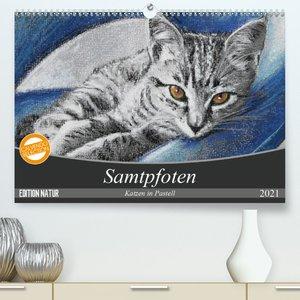 Samtpfoten - Katzen in Pastell (Premium, hochwertiger DIN A2 Wan