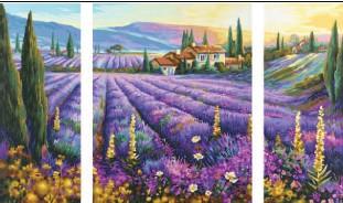 Schipper Malen nach Zahlen - Lavendelfelder (Triptychon)