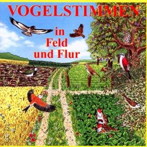 Vogelstimmen in Feld und Flur, 1 Audio-CD