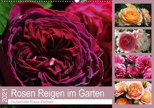 Rosen Reigen im Garten (Wandkalender 2021 DIN A2 quer)