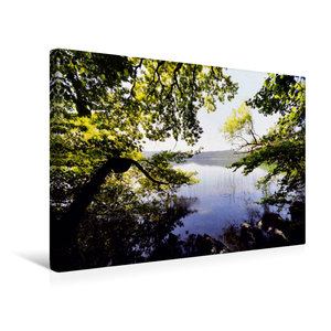 Premium Textil-Leinwand 45 cm x 30 cm quer Blick durch die B?ume am Laacher See