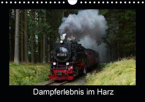Dampferlebnis im Harz (Wandkalender 2021 DIN A4 quer)