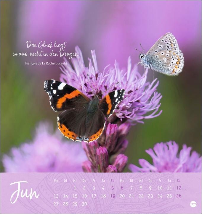 Ich wünsch dir ... Tage voller Glück Postkartenkalender 2022