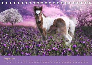 Von der Magie der Pferde (Tischkalender 2022 DIN A5 quer)