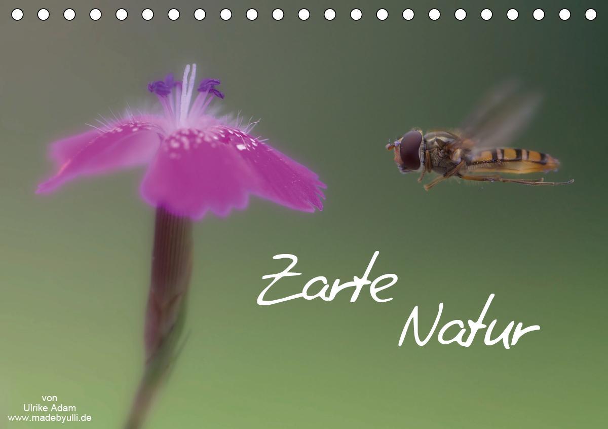 Zarte Natur 2021 (Tischkalender 2021 DIN A5 quer)
