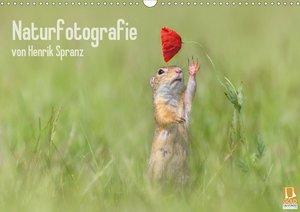 Naturfotografie (Wandkalender 2021 DIN A3 quer)