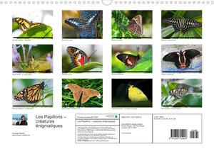 Les Papillons ? créatures énigmatiques (Calendrier mural 2022 DIN A3 horizontal)