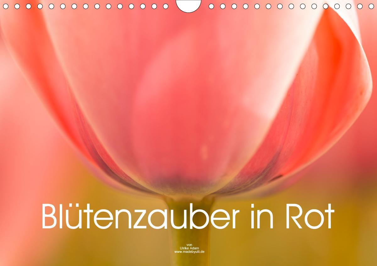 Blütenzauber in Rot (Wandkalender 2021 DIN A4 quer)
