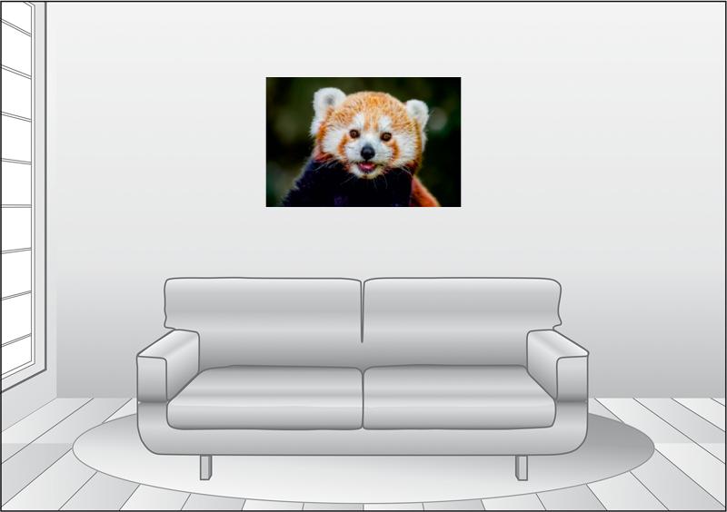 Premium Textil-Leinwand 90 cm x 60 cm quer Kleiner Panda