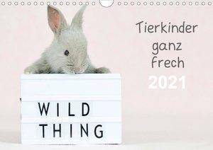 Tierkinder ganz frech (Wandkalender 2021 DIN A4 quer)
