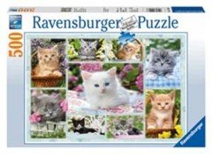 Kätzchen im Körbchen. Puzzle 500 Teile