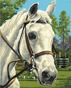 Schipper 609240394 - White Beauty, MNZ, Malen nach Zahlen