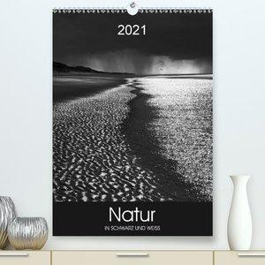 Natur in Schwarz und Weiß (Premium, hochwertiger DIN A2 Wandkalender 2021, Kunstdruck in Hochglanz)