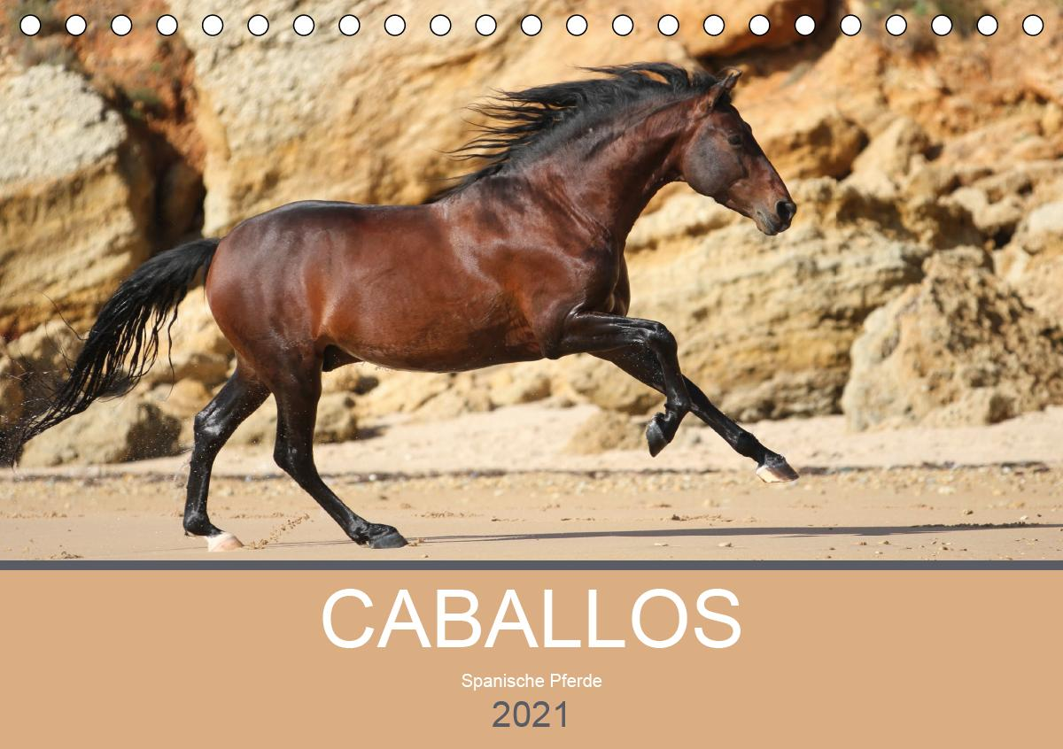 Caballos Spanische Pferde 2021 (Tischkalender 2021 DIN A5 quer)