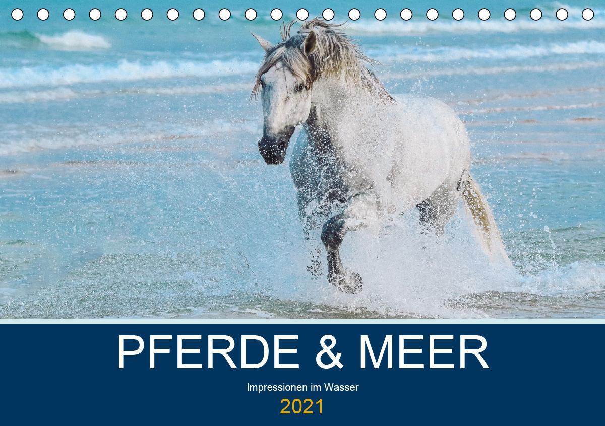 PFERDE & MEER (Tischkalender 2021 DIN A5 quer)