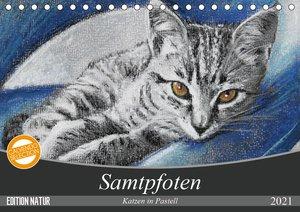 Samtpfoten - Katzen in Pastell (Tischkalender 2021 DIN A5 quer)