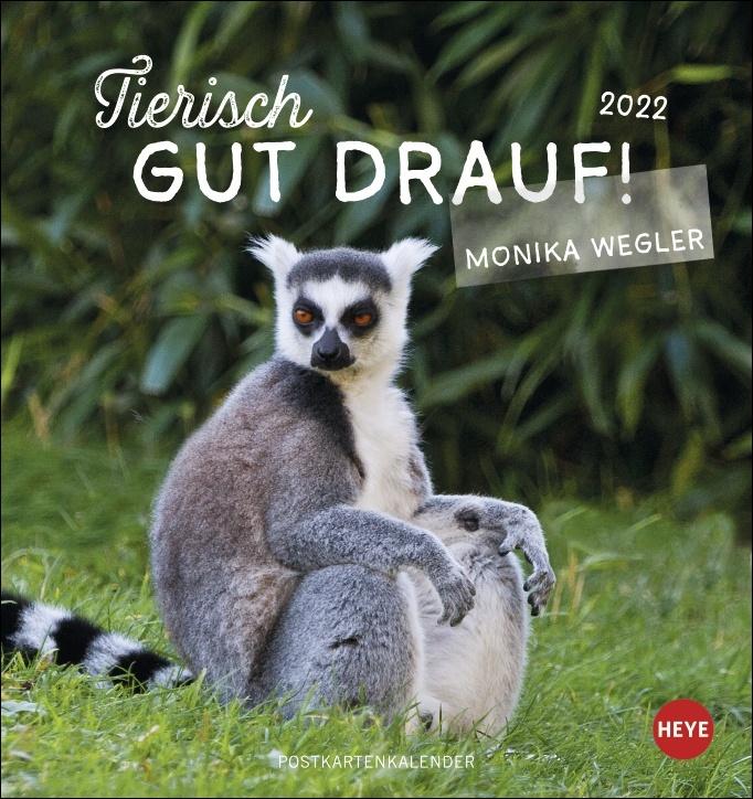 Tierisch gut drauf Postkartenkalender 2022