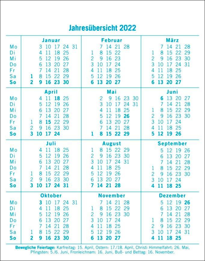 Dumme Sprüche für jeden Anlass Tagesabreißkalender 2022