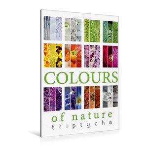 Premium Textil-Leinwand 80 cm x 120 cm  hoch Colours of Nature - Triptycha