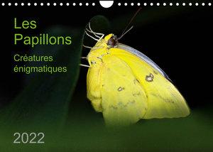Les Papillons ? créatures énigmatiques (Calendrier mural 2022 DIN A4 horizontal)
