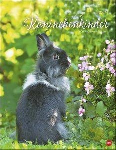 Kaninchenkinder Posterkalender 2022