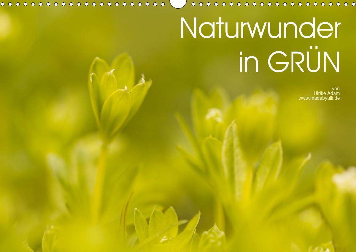 Naturwunder in GRÜN (Wandkalender 2021 DIN A3 quer)