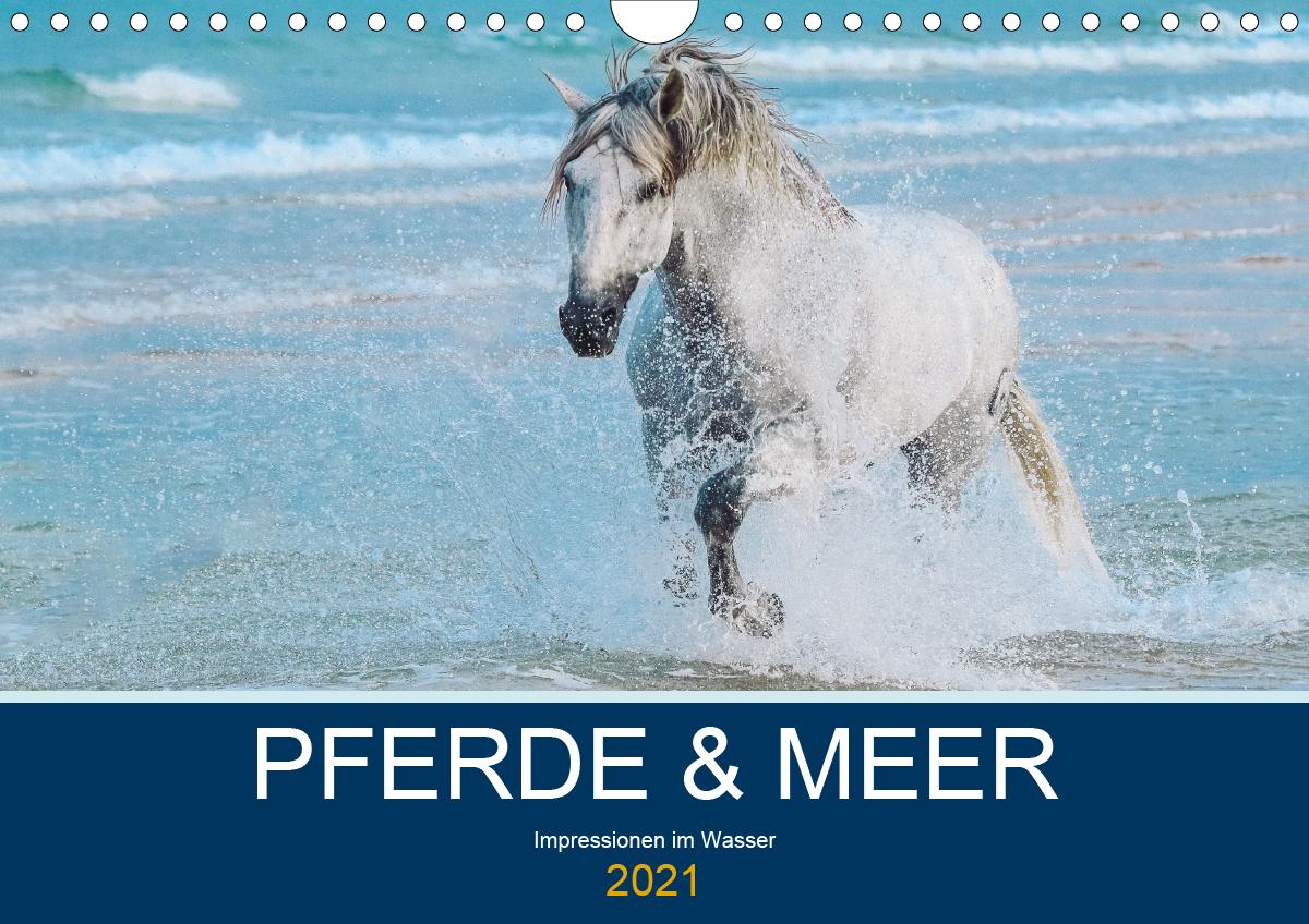 PFERDE & MEER (Wandkalender 2021 DIN A4 quer)
