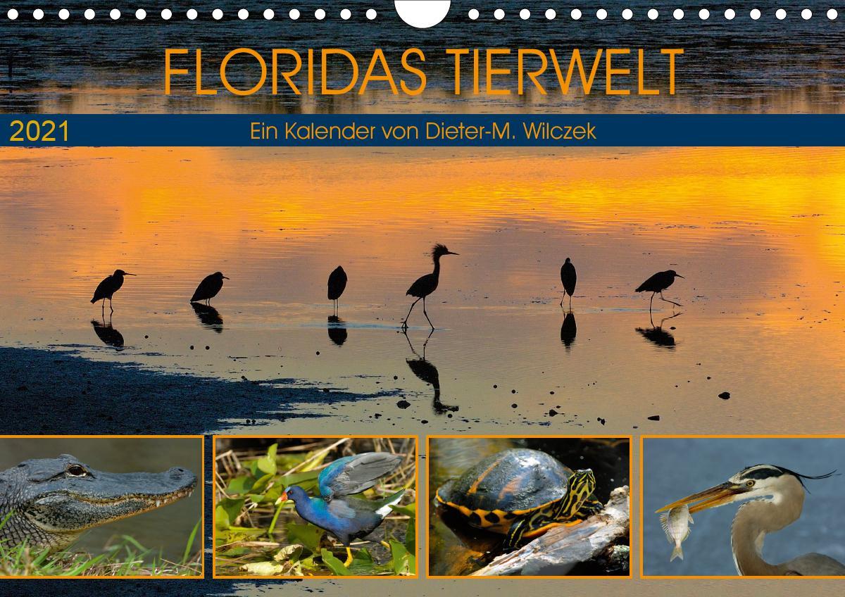 FLORIDAS TIERWELT (Wandkalender 2021 DIN A4 quer)