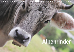 Alpenrinder