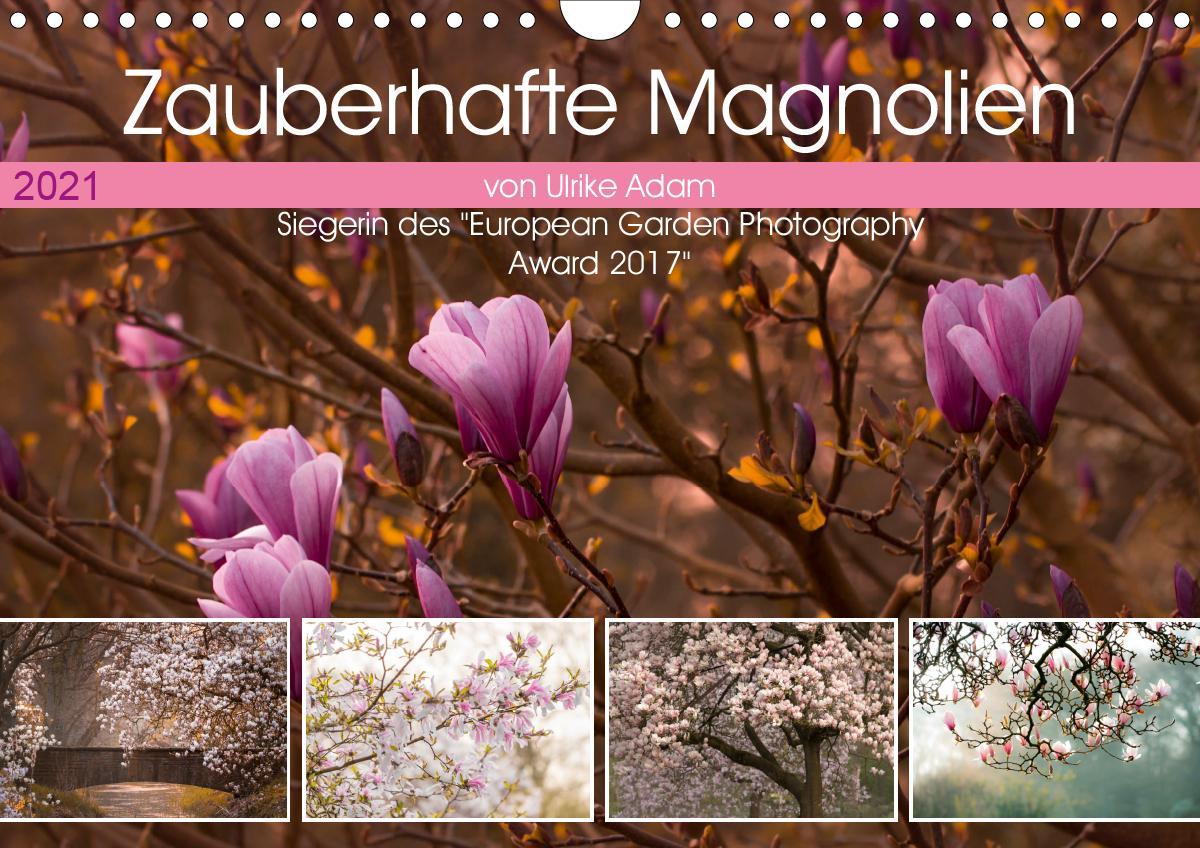 Zauberhafte Magnolien (Wandkalender 2021 DIN A4 quer)
