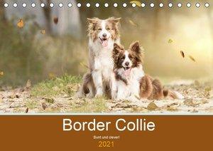 Border Collie - Bunt und clever! (Tischkalender 2021 DIN A5 quer