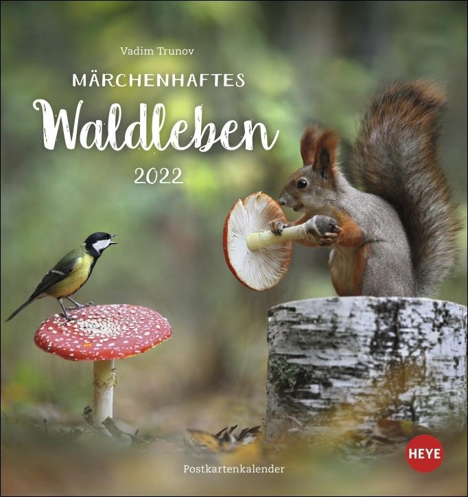 Vadim Trunov: Märchenhaftes Waldleben Postkartenkalender 2022